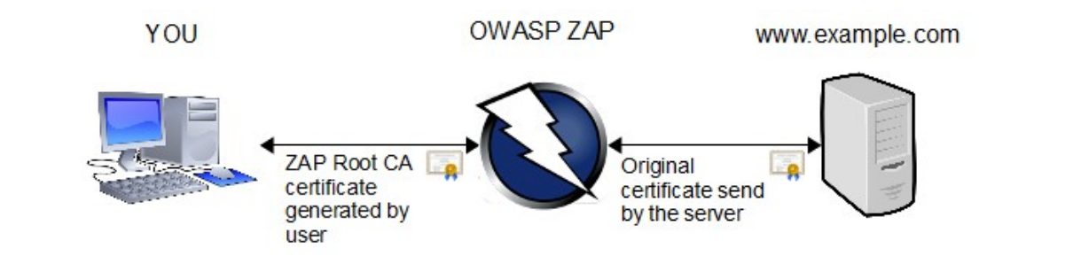 owasp root certificate authority